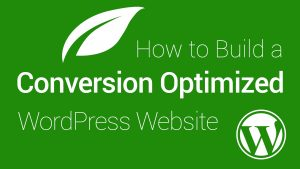 How To Set Up A Conversion Optimized Website From Scratch